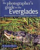 Phtographer's Guide To The Everglages
